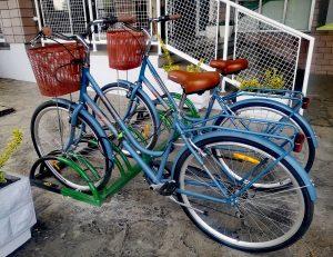 bicycle rental belgrade